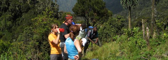Rwenzori mountain mahoma loop