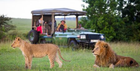 kenya destinations and safaris guide