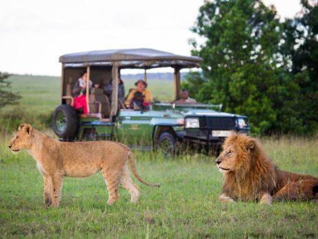 kenya destinations and safaris guide