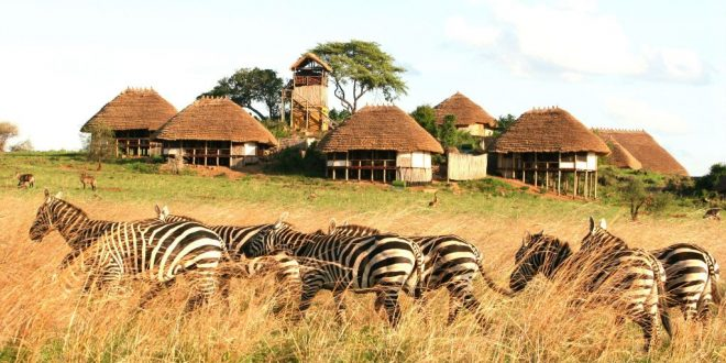 kidepo valley national park, 3 days kidepo wildlife safari